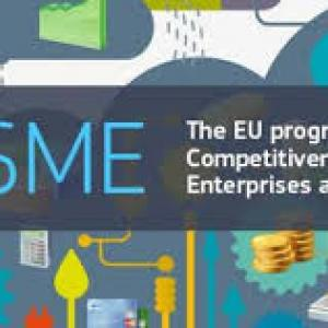 The COSME financial instruments: funding opportunities for European SMEs