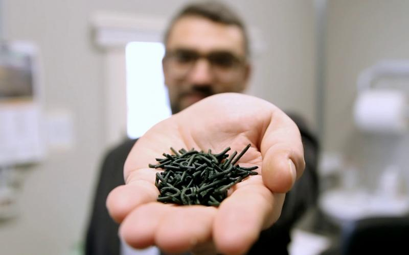 Embedded thumbnail for Spirulina, il superfood fatto in Sardegna